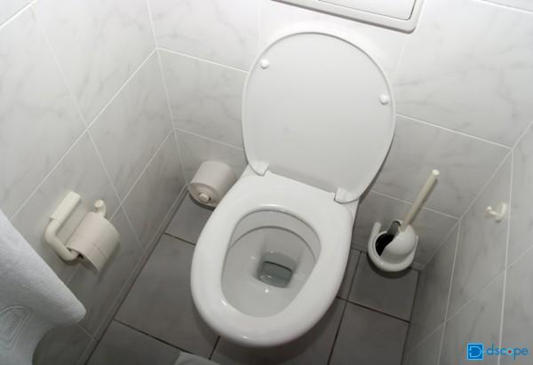 トイレ 便チェック